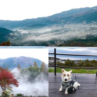 九州1.jpg